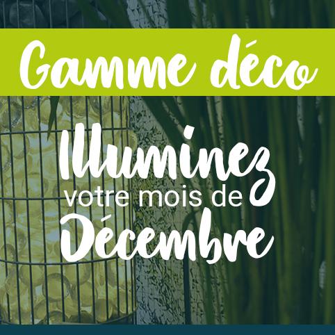 Illuminez votre mois de décembre avec nos idées de gabions lumineux !